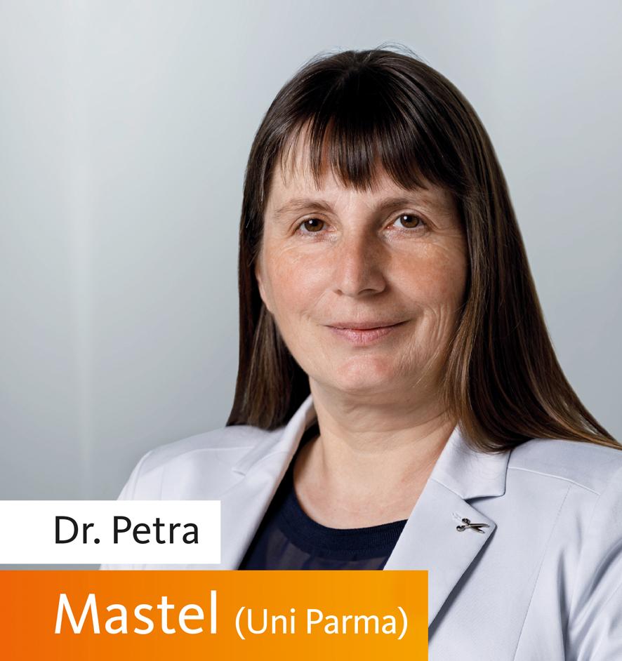 Mastel_P-W